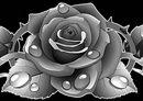 10 Орнамент из роз