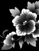 36 Цветы