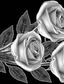 7 Четыре розы