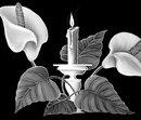 87 Лилии + свеча