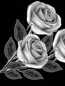 9 Три розы