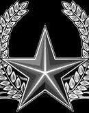 11   Звезда С Веткой