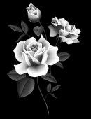 133   Розы