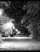 17  Снежок