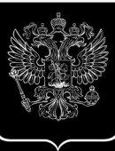 30  Герб России Темный