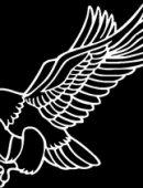 4  Орел-Хищная Птица