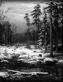 41 Зимний Лес