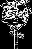 62   Дерево