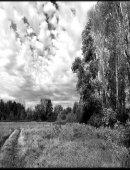 7  Осенняя Прогулка