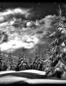 75 Пейзаж зимний вечер
