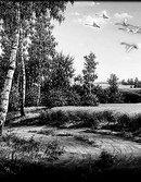 80 Пейзаж гуси-лебеди