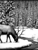 88 Пейзаж лось в зимнем лесу