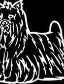 9   Собака