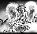 91 Девочка ангел