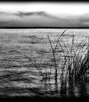 92 Пейзаж широкая река