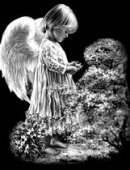 94 Ангел-пташка